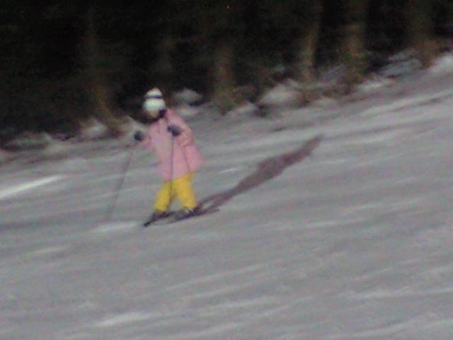 スキーナイター