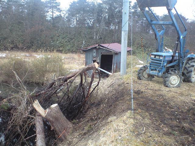 伐採木の引き揚げ