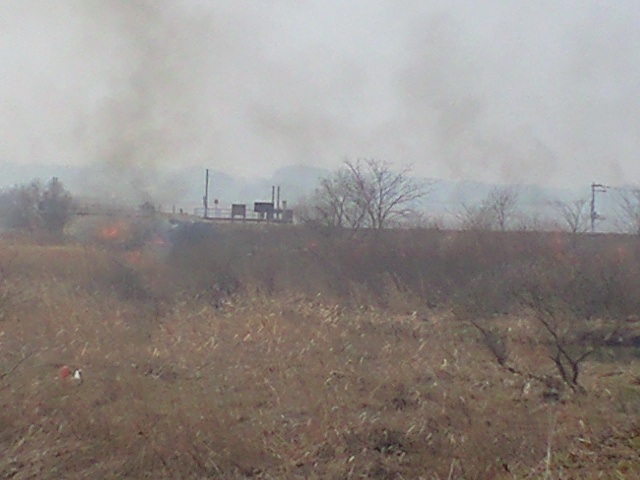 蕪栗沼野焼き