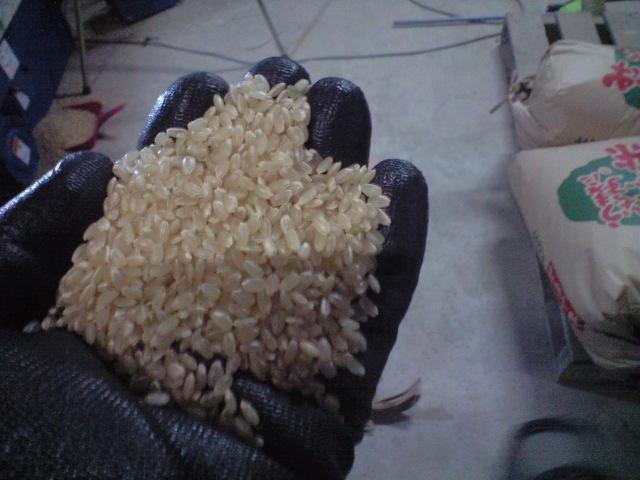 棚田のお米