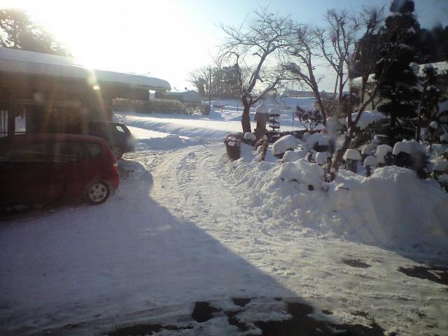 雪、溶け始める