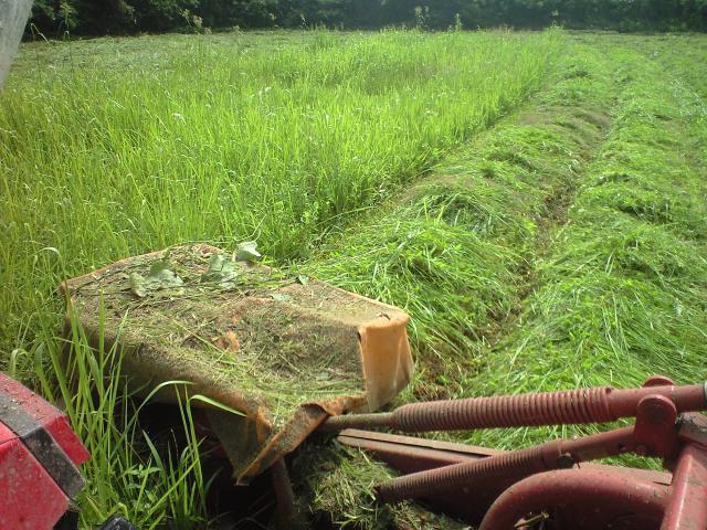 トラクターで草刈り