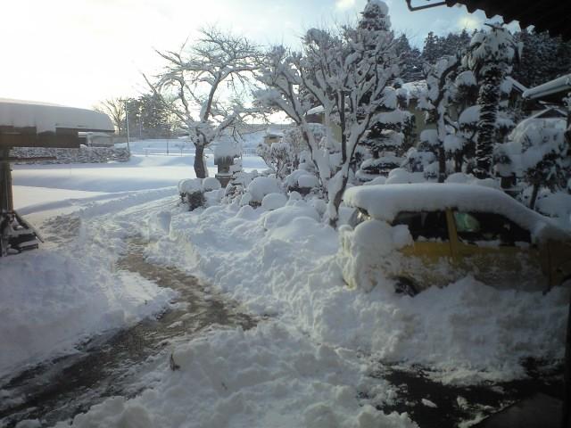 ちょー大雪